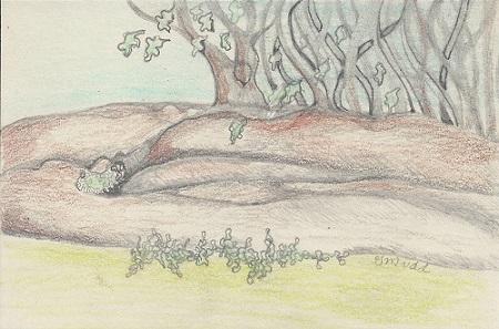 Postcard #10 G.Mudd Landscape