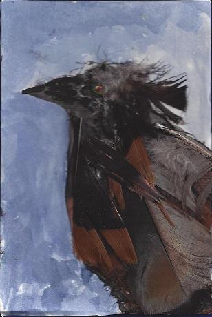 Prophecy of New London, Clark van der Lyke, Mixed Media on Rag Mat, Postcard #49, $TBD