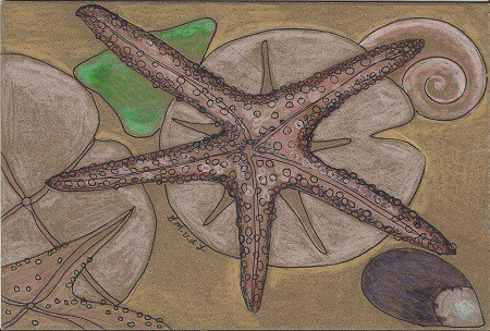 Star of New London, Gretchen van der Lyke, Colored Pencil on Rag Mat, Postcard #60, $TBD