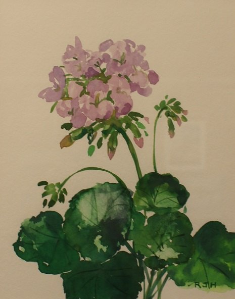 Geranium, Robert J. Hauschild, Watercolor, 13x16, $195