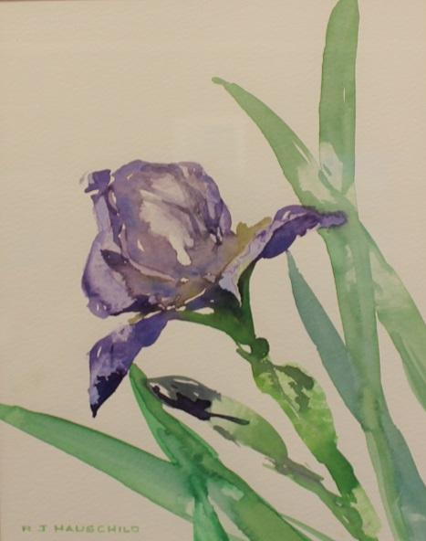 Purple Iris, Robert J. Hauschild, Watercolor, 12x16, $195