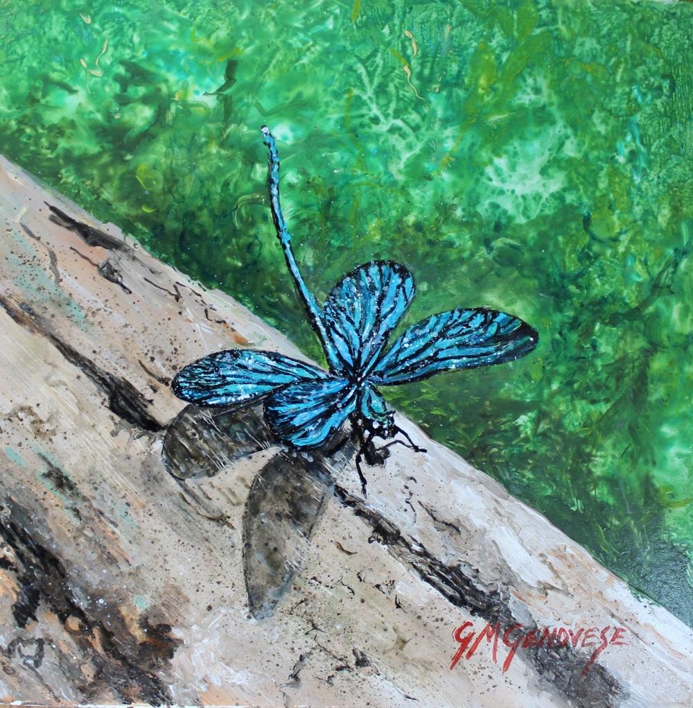 Resting Dragonfly, Gigi Mezzo Genovese, Acrylic, 8x8, $200