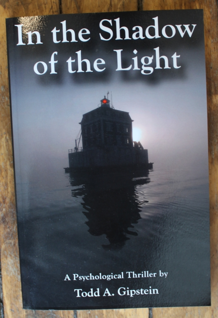 In The Shadow of the Light - A Psychological Thriller by Todd A. Gipstein
